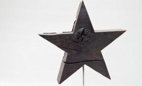Stern aus Mooreiche
